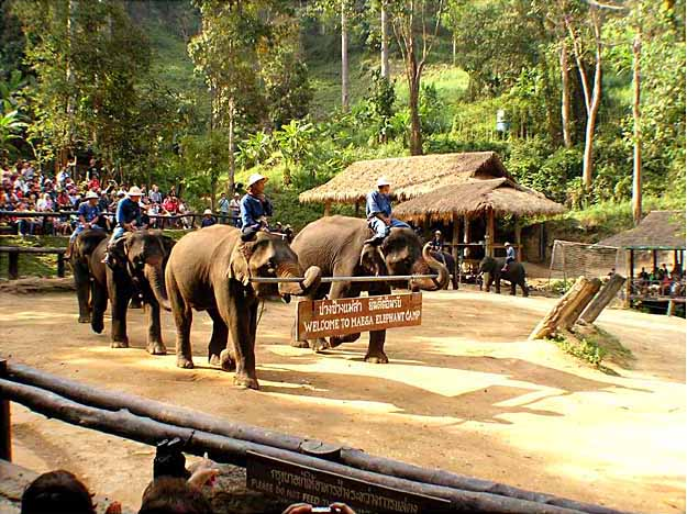 Elephant Conservation Center Home Stay Tour